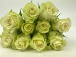 Adalonia Florist Selection