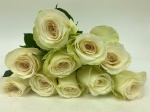 Alba Florist Selection