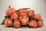 Emotion Florist Selection