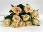 Sweet Tacazzi Florist Selection